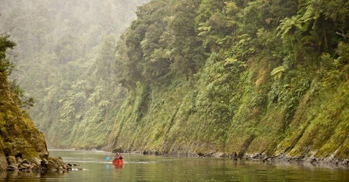 Whanganui-River-Upper-1.jpg#asset:7940