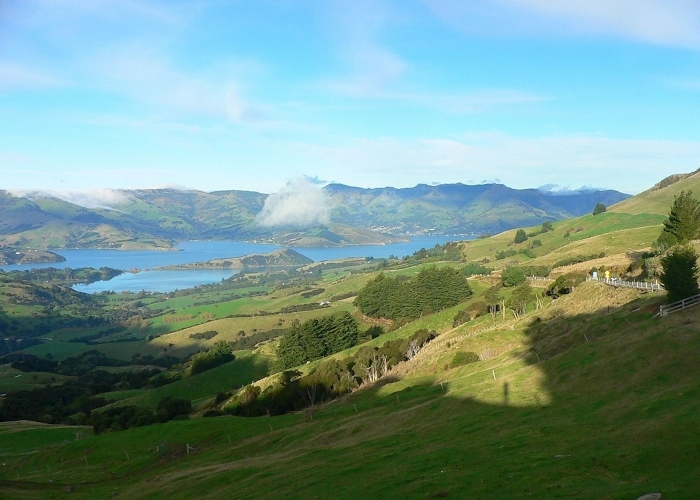 akaroa_view-from_hill-1.jpg#asset:7958