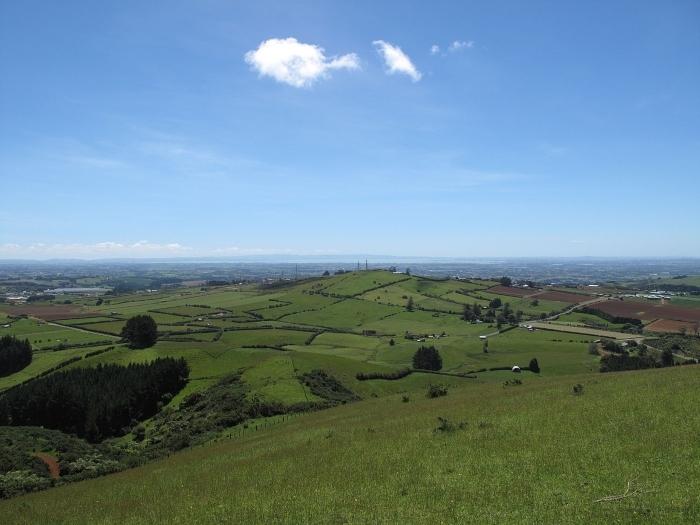 bombay-hills-1.jpg#asset:8239