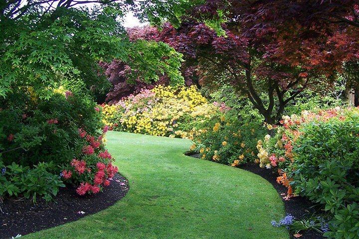 botanic-garden-dud.jpg#asset:4700