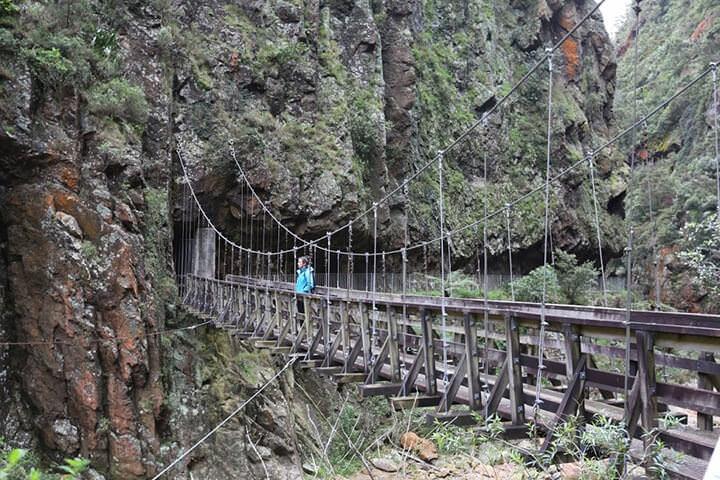 karangaheke-gorge-2.jpg#asset:5191
