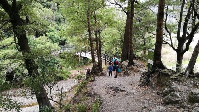 orongorongo-track-turere-stream-hero-1.jpg#asset:7903