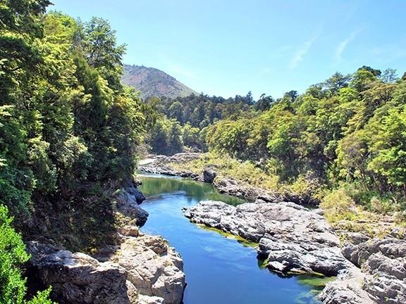 view-pelorus-river.jpg#asset:5070