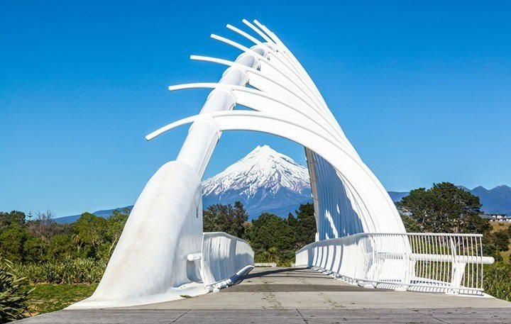 walkway-npl-mt-taranaki.jpg#asset:5161